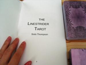 linestrider layout
