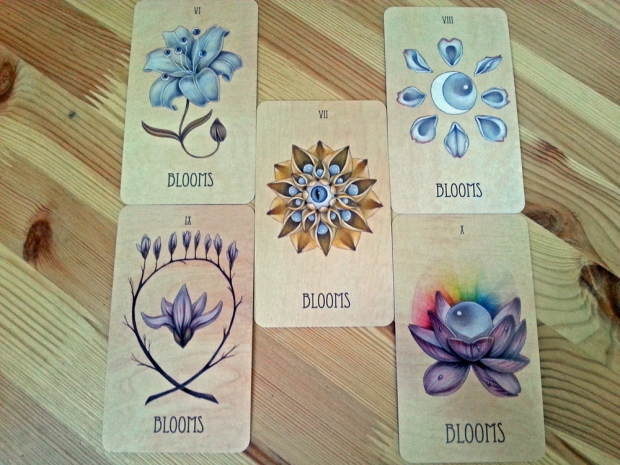 Blooms 6-10